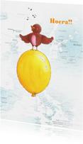 Verjaardagskaarten - Ballon 1 Illu-Straver