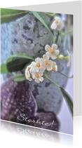 Condoleancekaarten - Condoleancekaart paarse orchidee