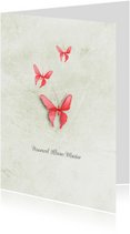 Condoleancekaart vaarwel kleine vlinder roze