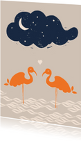 Liefde kaarten - Flamingo's in het water