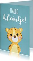 Hallo kleintje luipaard