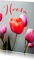 Verjaardagskaarten - Jarig tulpen schilderstijl