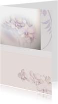 Rouwkaarten - rouwkaart voor je dierbaren orchidee