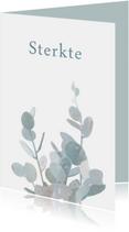 Sterkte kaarten - Sterkte kaart met eucalyptustak
