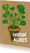 Verhuiskaarten - Verhuiskaart pannenkoekplant