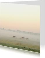 Zomaar kaarten - 4k Zonsopkomst met ochtendmist