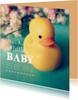 Felicitatiekaarten - A little baby is born