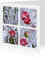 Bloemenkaarten - Ansichtkaart winter bloemen