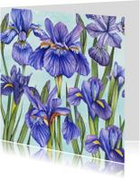 Bloemen Lisse aquarel