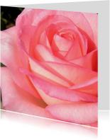 Bloemenkaart met een roos