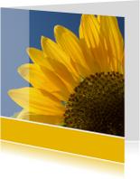 Bloemenkaart zonnebloem