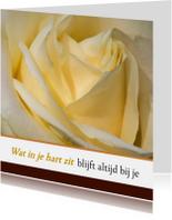 Condoleancekaarten - Condoleance gele roos