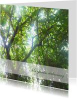 Condoleancekaarten - Condoleancekaart bomen2