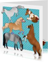 Dieren Paardenkaart Chiwowy