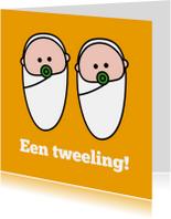 Felicitatiekaarten - Een tweeling geboren!