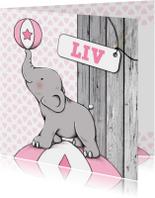 Geboortekaartjes - Geboorte meisje olifant bal - IH