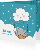 Geboortekaartjes - Geboorte olifantje wolk Bram IH