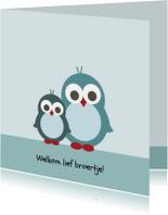 Geboorte - Pinguin broertjes