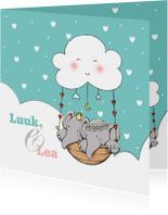 Geboorte tweeling Luuk en Lea IH