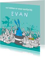 Geboortekaartjes - Geboortekaartje konijntjes blauw