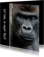 Gorilla power - OTTI
