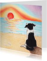 Hondje Sendie ziet de zonsondergang