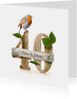 Jubileumkaarten - Jubileumkaart feest 40 roodborstje