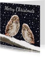 Kerstkaart Twee uilen op een tak in