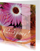 Jubileumkaarten - Kleurrijke jubileumkaart twaalfeneenhalf