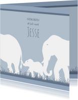 Leuk geboortekaartje met olifantje voor zoon