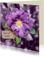 Mooie klassieke condoleancekaart paarse roos