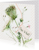 Oeps, te laat - Wilde bloemen illustratie