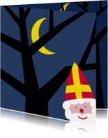 Sinterklaaskaarten - Sinterklaaskaart met boom en maan