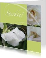 Sterkte kaarten - Sterkte kaart met tere bloemen