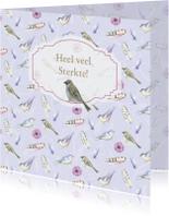 Sterkte kaarten - Sterkte vogeltje en veertjes