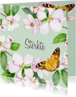 Sterkte kaarten - Sterktekaart Kersenbloesem
