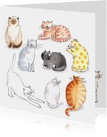 Tien katten