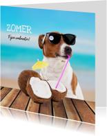 Vakantiekaarten - Vakantiekaart - Boris fijne zomer