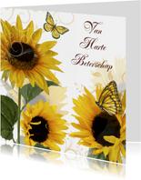 Beterschapskaarten - Van Harte Beterschap zonnebloemen