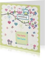 Felicitatiekaarten - Van harte tweeling meisje jongen