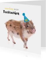 Verjaardagskaart - Feestvarkentje met feesthoedje
