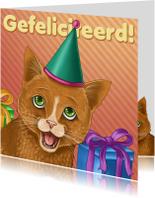 Verjaardagskaarten - Verjaardagskaart katje met feesthoedje