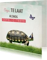 Verjaardagskaart Schilpad
