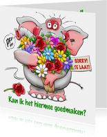 Verjaardagskaart Sorry te laat olifant bos bloemen