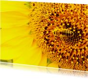 Bloemenkaart wesp - BK