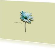 Sterkte kaarten - Sterkte Kaart Blauw Margrietje