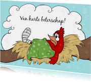 Beterschapskaarten - Ziek vogeltje