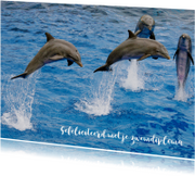 Zwemdiploma 4 - Dolfijn - OT