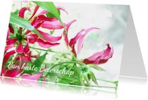 Beterschapskaarten - Beterschap dromerig roze&groen