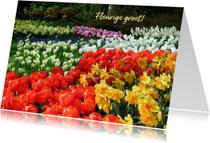 Bloemen voorjaar- en zomer groet